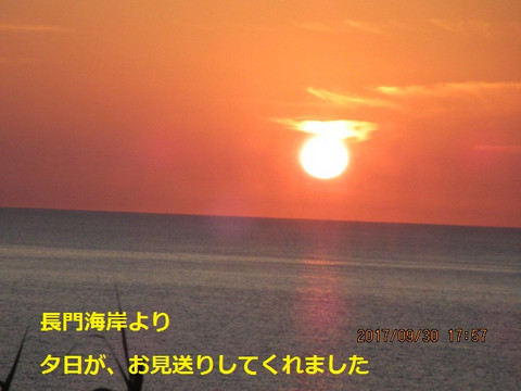 Img_2273